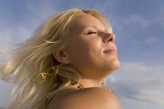 предложение солнца стоковое изображение