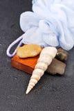 предметы первой необходимости ванны Стоковая Фотография RF