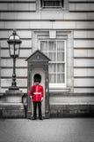 Предохранитель на обязанности на Букингемском дворце, должностное лицо res ферзя стоковые фото
