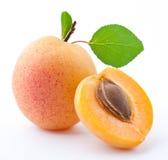предпосылка абрикоса выходит белизна Стоковая Фотография