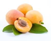 предпосылка абрикоса выходит белизна Стоковое Изображение