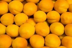 предпосылка абрикоса Стоковое фото RF