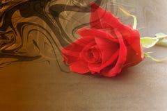 Предпосылка абстрактного вектора пестротканая затеняемая с красной розой, иллюстрацией вектора иллюстрация вектора