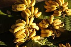 Предпосылка банана установила много рынок Стоковая Фотография