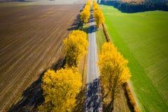 предпосылка больше моего перемещения портфолио желтый цвет вала неба голубого пасмурного ландшафта поля падения сиротливый Воздуш стоковая фотография