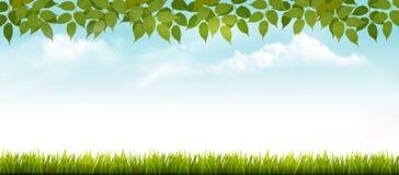 Предпосылка весны природы с травой и листьями Стоковая Фотография