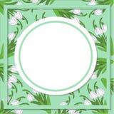 Предпосылка весны с реалистическими snowdrops на салатовом Стоковые Изображения RF