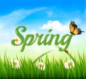 Предпосылка весны с травой, небом и бабочкой Стоковая Фотография
