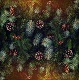 Предпосылка ветвей рождественской елки, спрус праздника, можжевельник, ель, лиственница, конусы сосны со светом стоковые фото