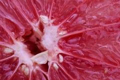 Предпосылка витаминов макроса veggie овоща плодоовощ грейпфрута стоковые фотографии rf