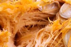 Предпосылка витаминов макроса veggie тыквы Vegetable стоковые фото
