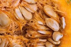 Предпосылка витаминов макроса veggie тыквы Vegetable стоковое изображение rf