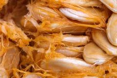 Предпосылка витаминов макроса veggie тыквы Vegetable стоковые изображения
