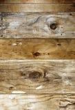 предпосылка всходит на борт деревянного Стоковая Фотография RF