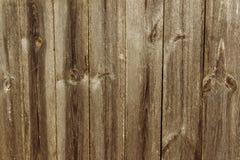 предпосылка всходит на борт деревянного Стоковое Изображение RF