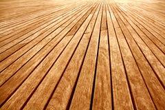 предпосылка всходит на борт деревянного Стоковые Изображения