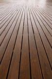 предпосылка всходит на борт деревянного Стоковое Фото