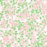 предпосылка выходит мягкая весна Стоковые Изображения RF