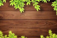 предпосылка выходит стена вала деревянным Стоковое фото RF