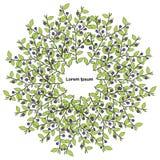 Предпосылка голубики красочная круглая, элемент дизайна Lorem Ipsum Стоковые Изображения