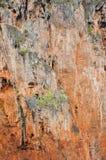 Предпосылка горы Стоковые Фотографии RF