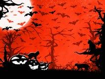 Предпосылка, деревья, летучие мыши, коты и тыквы партии хеллоуина красные Стоковая Фотография RF