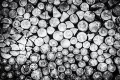 Предпосылка деревянных журналов, тема обезлесения, бесцветная Стоковое Фото