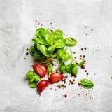Предпосылка еды, зеленый базилик, чеснок, соль и перец, взгляд сверху стоковое фото rf