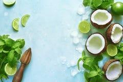 Предпосылка еды с ингридиентами для делать coc коктеиля лета Стоковые Фото