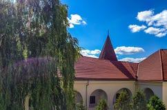 Предпосылка замка Shenborn в украинских прикарпатских горах Стоковое фото RF