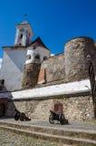 Предпосылка замка Shenborn в украинских прикарпатских горах Стоковое Изображение