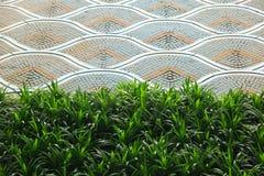Предпосылка зеленой травы и текстура волны на плитке Стоковые Фото