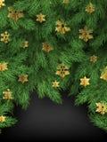 Предпосылка зимнего отдыха веселого рождества, ветви ели и золотые снежинки Большой для карт, знамен, заголовков иллюстрация вектора