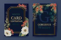 Предпосылка зимнего отдыха, приглашение Дизайн картины свадьбы Цветочная композиция Рождество и счастливая карточка Нового Года иллюстрация вектора