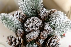 Предпосылка зимних отдыхов конусов сосны напудренных с искусственным снегом и белой пуховой шалью С Рождеством Христовым коричнев Стоковое фото RF