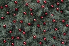 Предпосылка зимы ветвей ели Украшенный с красными безделушками небо klaus santa заморозка рождества карточки мешка Взгляд сверху  стоковое фото rf