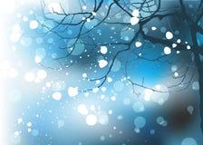 Предпосылка зимы рождества Стоковые Фото