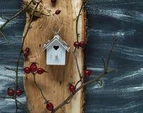 Предпосылка зимы с малым birdhouse и одичалым подняла на голубую и белую предпосылку, естественный свет, взгляд сверху Стоковые Изображения RF