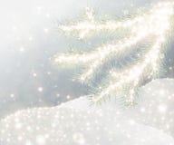 Предпосылка зимы Стоковые Изображения RF