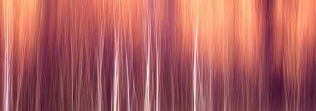 Предпосылка знамени сети осенняя текстурная сценарная при нерезкость движения, тонизированная в винтажном стиле Стоковое Фото
