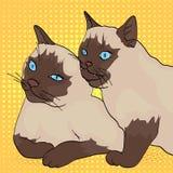 Предпосылка искусства попа 2 кота, укусы животного другое Сибирская порода, Masquerade Neva цвета или сиамское Шуточный стиль иллюстрация вектора