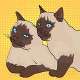 Предпосылка искусства шипучки 2 кота, животные укусы другое Сибирская порода, Masquerade Neva цвета или сиамское Шуточный тип иллюстрация штока