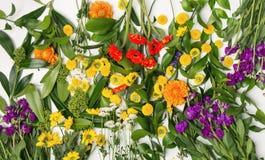 Предпосылка используя различные цветки Стоковая Фотография RF