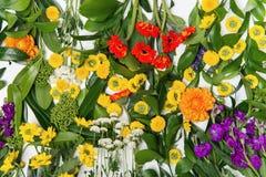 Предпосылка используя различные цветки Стоковое Фото