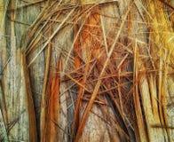 Предпосылка картины спада текстурированная древесиной стоковые фото