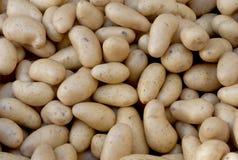 Предпосылка картошки Стоковое Изображение