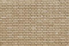 Предпосылка кирпичной стены миндалины покрашенная буйволовой кожей Стоковые Фотографии RF