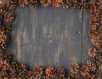 Предпосылка конуса сосны Стоковое Изображение RF
