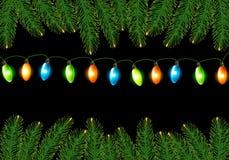 Предпосылка Кристмас с цветастым harland Стоковое Изображение RF