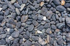 Предпосылка круглого камешка моря Стоковые Изображения